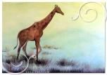 CAMERETTA BIMBO_SAVANA_giraffax